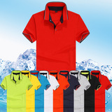 polo shirts/blank plain shirts